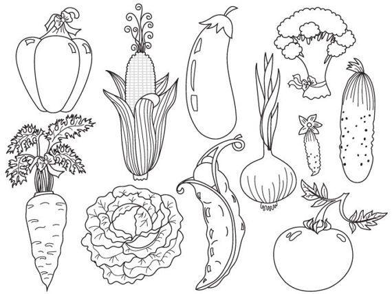 Vegetables Clipart Digital Vector Tomato Carrot Pepper Etsy Vegetable Cartoon Vegetables Clipart Clip Art