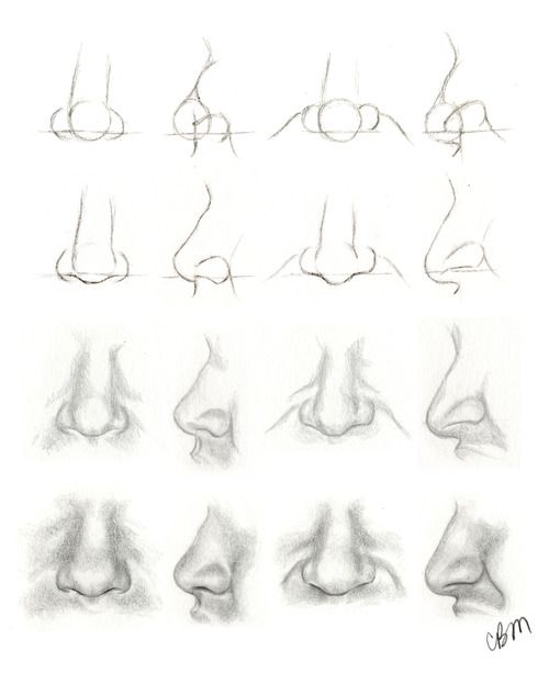 Livin The Dream Nose Tutorial Tutorials Pinterest Dessin