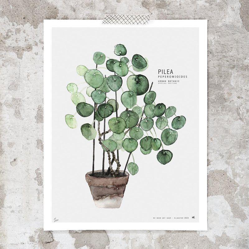 Dibujo vegetal de acuarela, impreso en papel fotográfico de 250 gr. Es la pieza perfecta en torno a la que crear un ambiente inspirador, sosegado y orgánico.