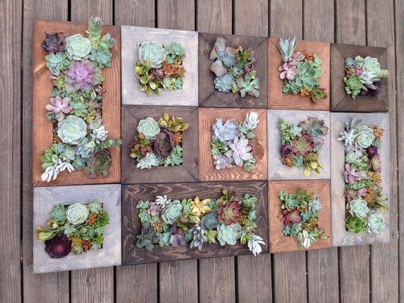 12 Living Wall Succulent Planter Vertical Hanging Garden Art Rustic Wood Arrangement Flower Bouquet Gift
