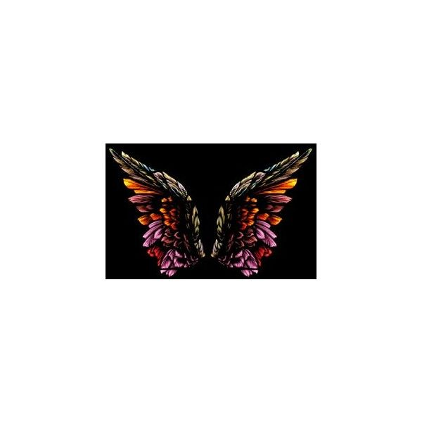 Angel Wings Stock photo ❤ liked on Polyvore featuring wings, backgrounds, butterflies, angels and fairies
