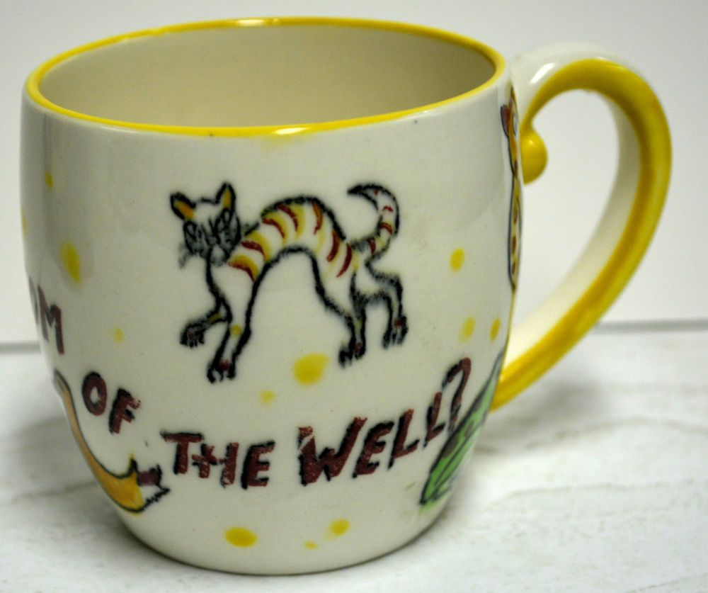 What S At The Bottom Of The Well Child S Mystery Mug Duck Nasco