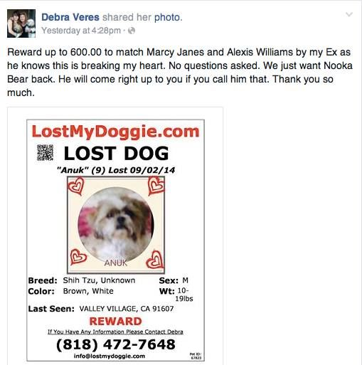 Valley Village Ca Losing A Dog My Heart Is Breaking Dogs