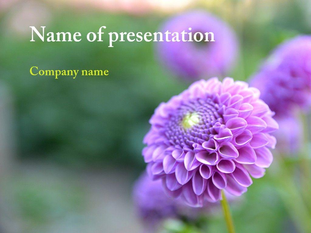 Summer Flowers Powerpoint Template Powerpoint Pinterest