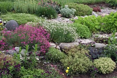 Rock Garden Tips Landscaping With Rocks Sloped Garden Rock Garden
