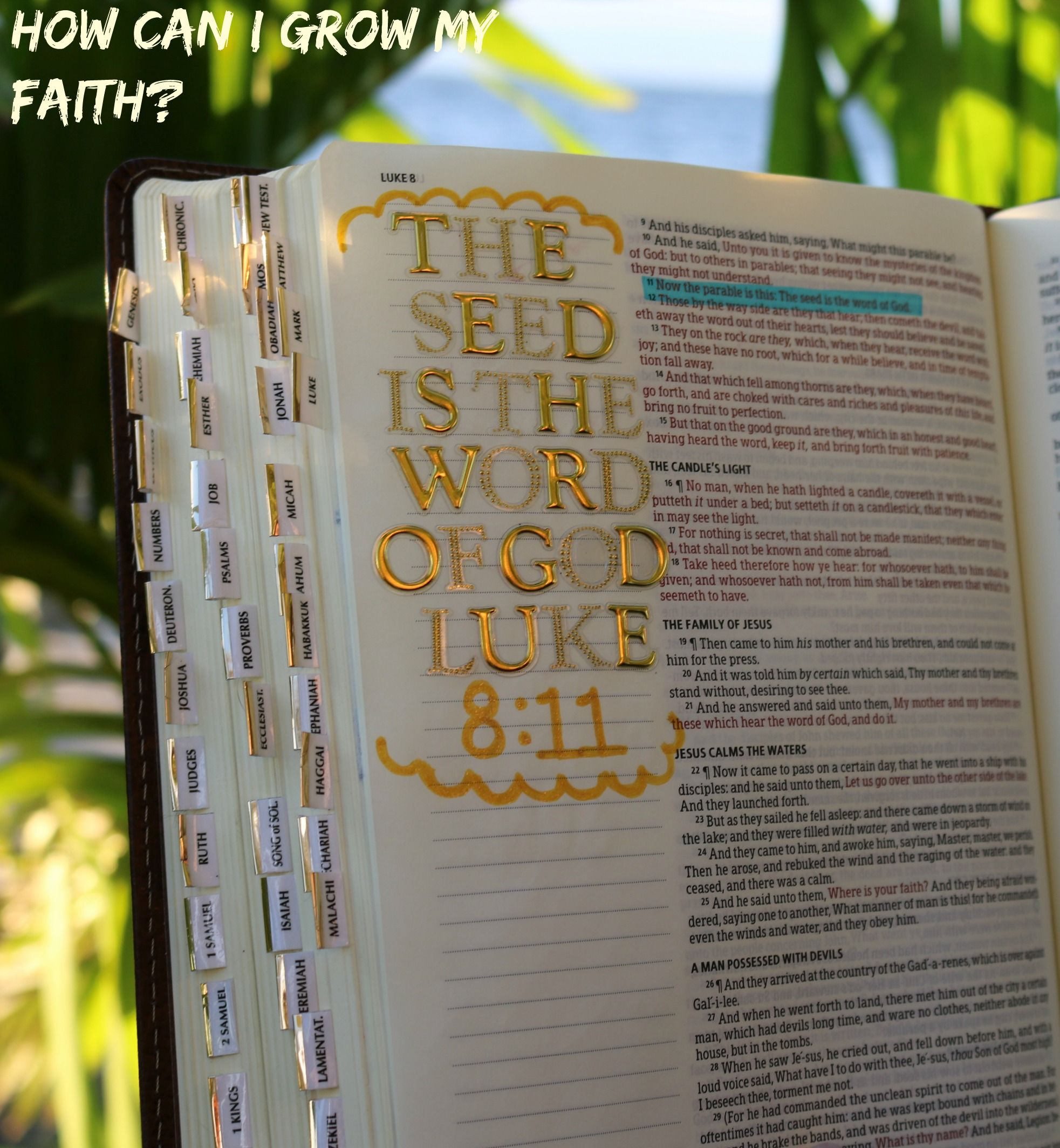 Learning how to creatively grow your faith and relationship with God through bible journaling/illustrated faith.