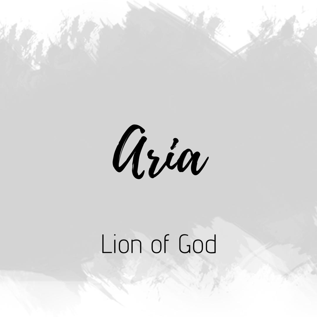 Pin by Aria Mandal on Aria | Muslim baby names, Baby name ...