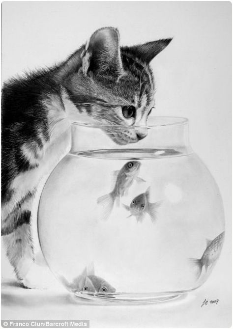 Realistic pencil drawings of animals 22 pictures