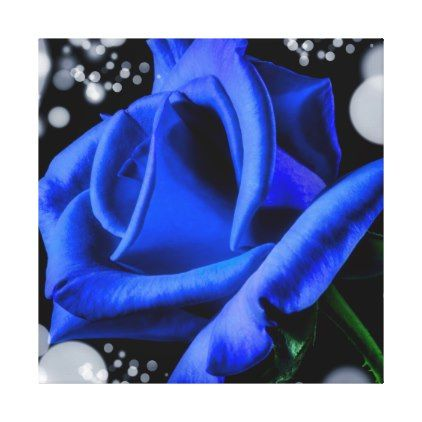 gorgeous blue rose canvas print - valentines day gifts love couple, Ideas