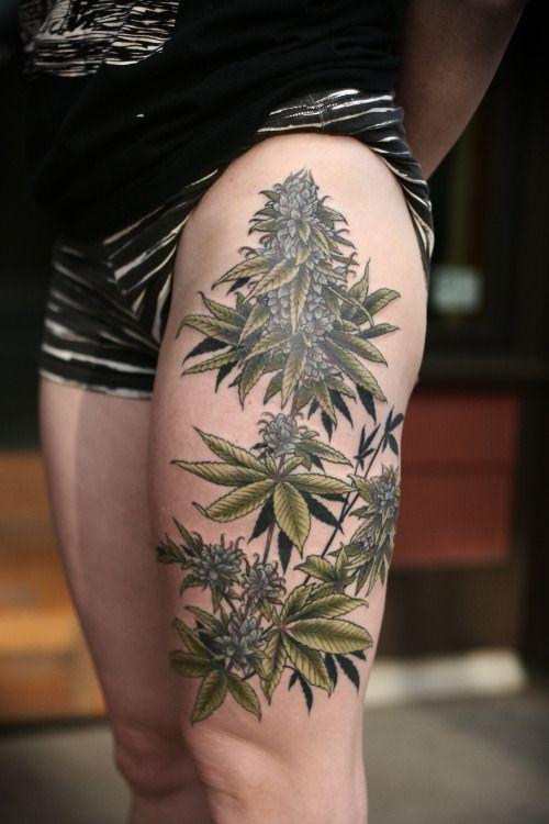 pin by aubrey lynn on tattoos pinterest tattoo plant tattoo and rh pinterest com Weed Sleeve Tattoo Designs realistic marijuana plant tattoo