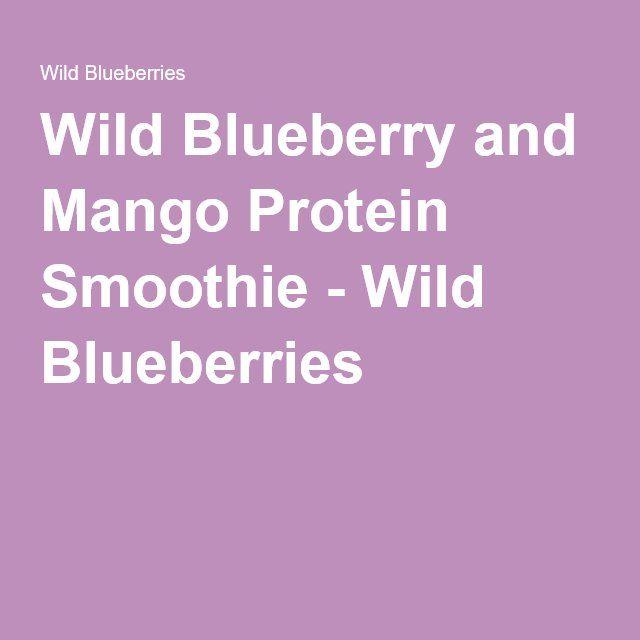 Wild Blueberry and Mango Protein Smoothie - Wild Blueberries