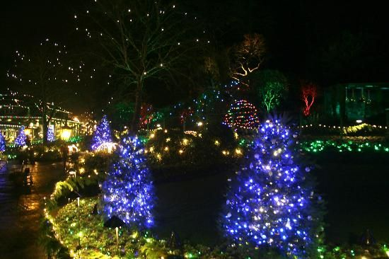 5102122f71d6ee8c46d4b185fa226a62 - The Butchart Gardens Christmas Lights Tour