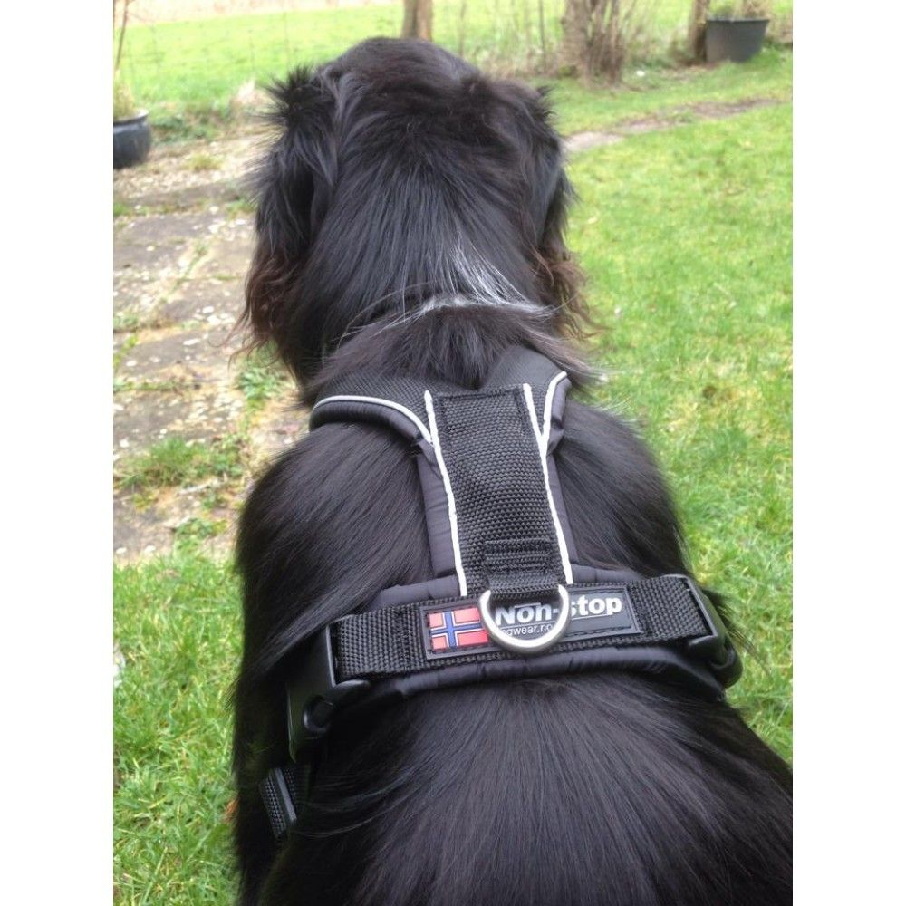 Non Stop Half Shoulder Harness Dog Neck Sporting Dogs Canine Health