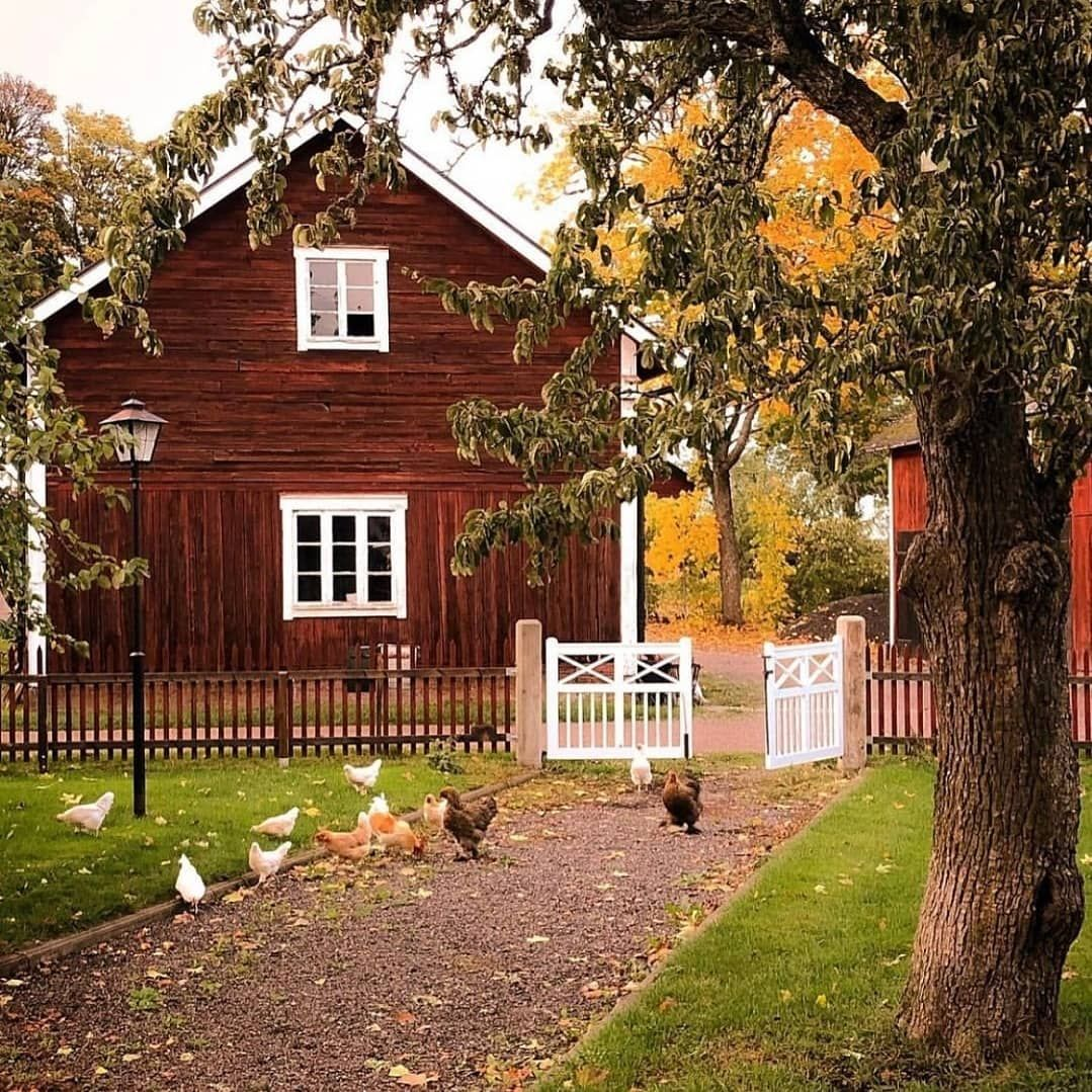 "The country homes of Sweden on Instagram: ""How adorable is this 😍!? Credit @mitt_ljuva_hem #lantligt #lantligahem #cottagestyle #cottagesofinstagram #cottagecharm #thecottagejournal…"""