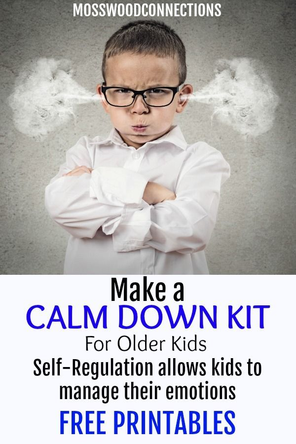 Calm Down Kit for Older Kids - Mosswood Connection