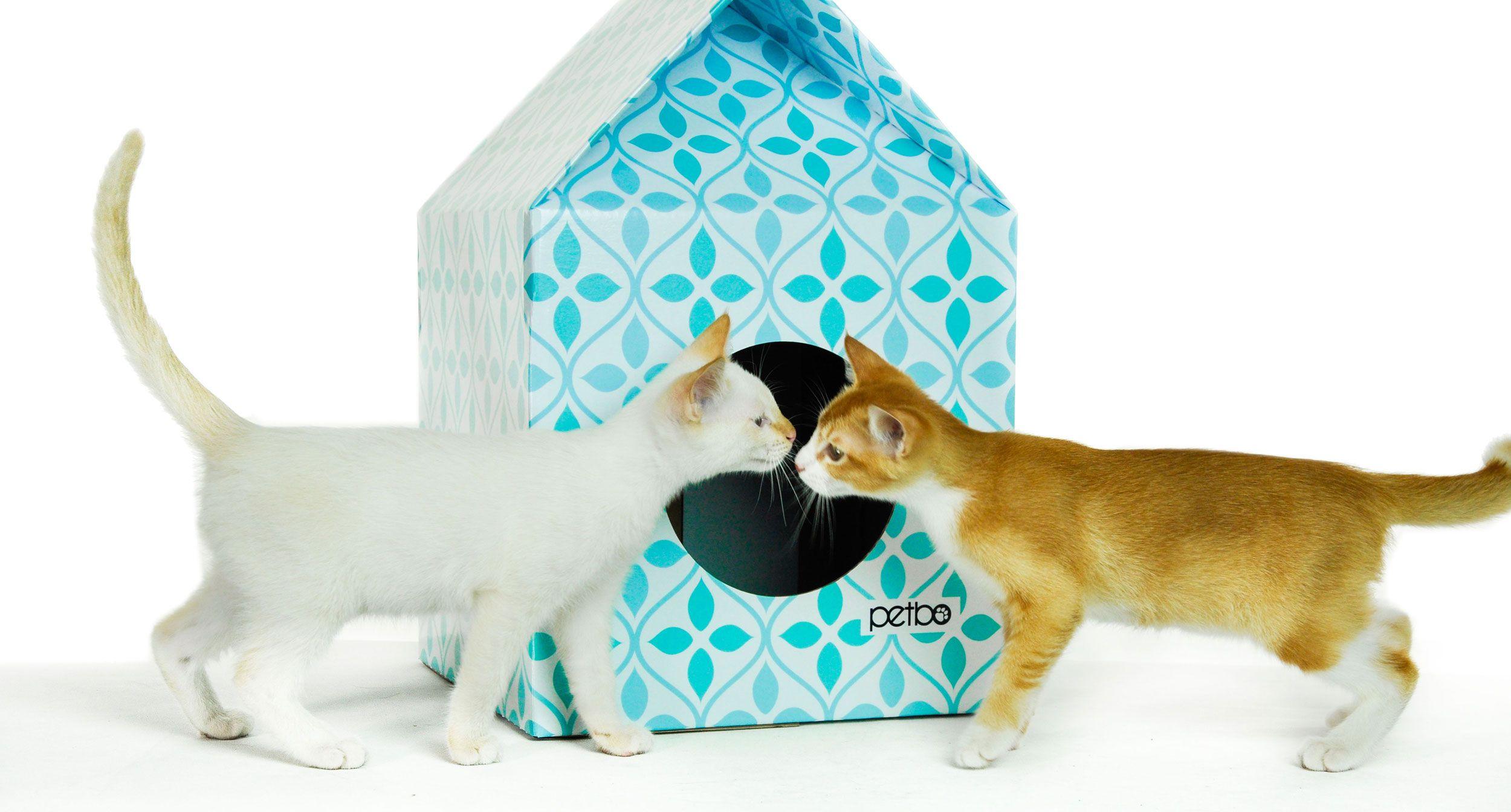 Resultado de imagen para cardboard cat house