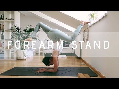 how to do a forearm stand for beginners  youtube  yoga