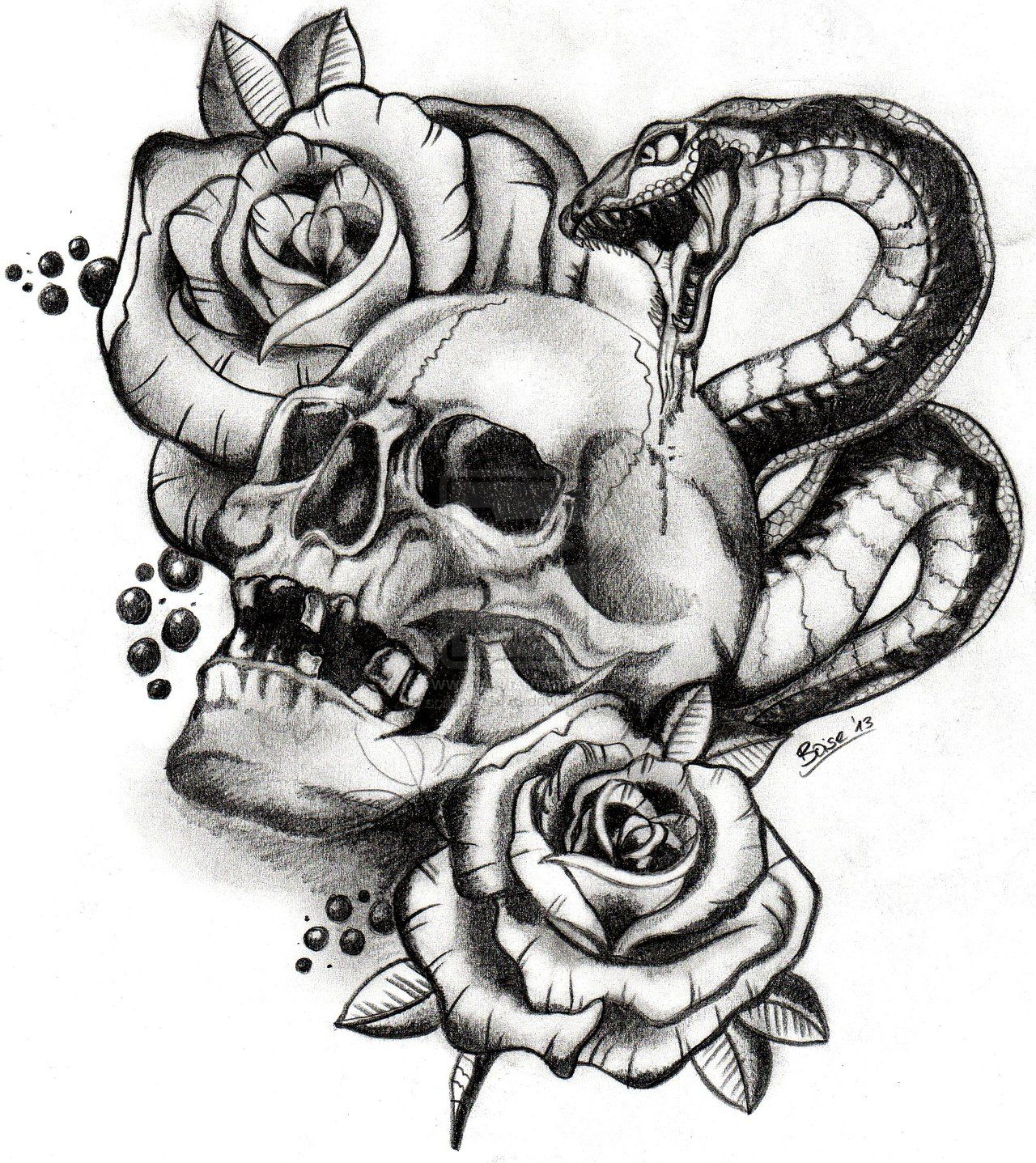 Skull And Snake Drawings