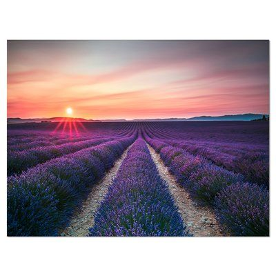 Designart Endless Rows Of Lavender Flowers Modern Landscape Photographic Print On Wrapped Canvas Siz Landscape Wall Art Modern Landscaping Landscape Canvas Art
