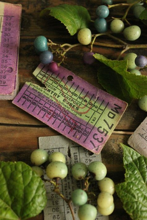 green and plum . still life. just the ticket