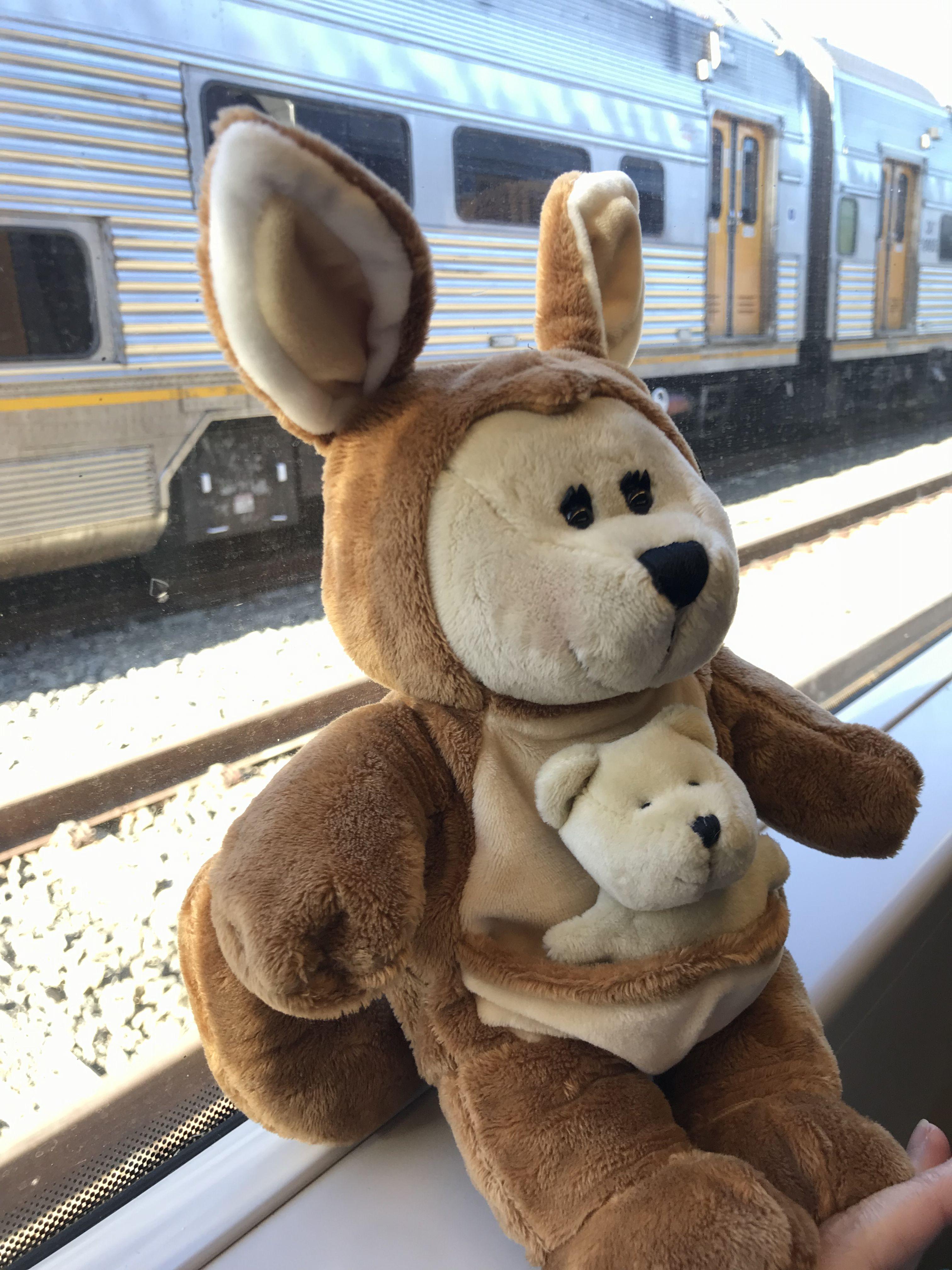 Kangaroo Starbucks Bearista Australia Toys Teddy Bear Teddy