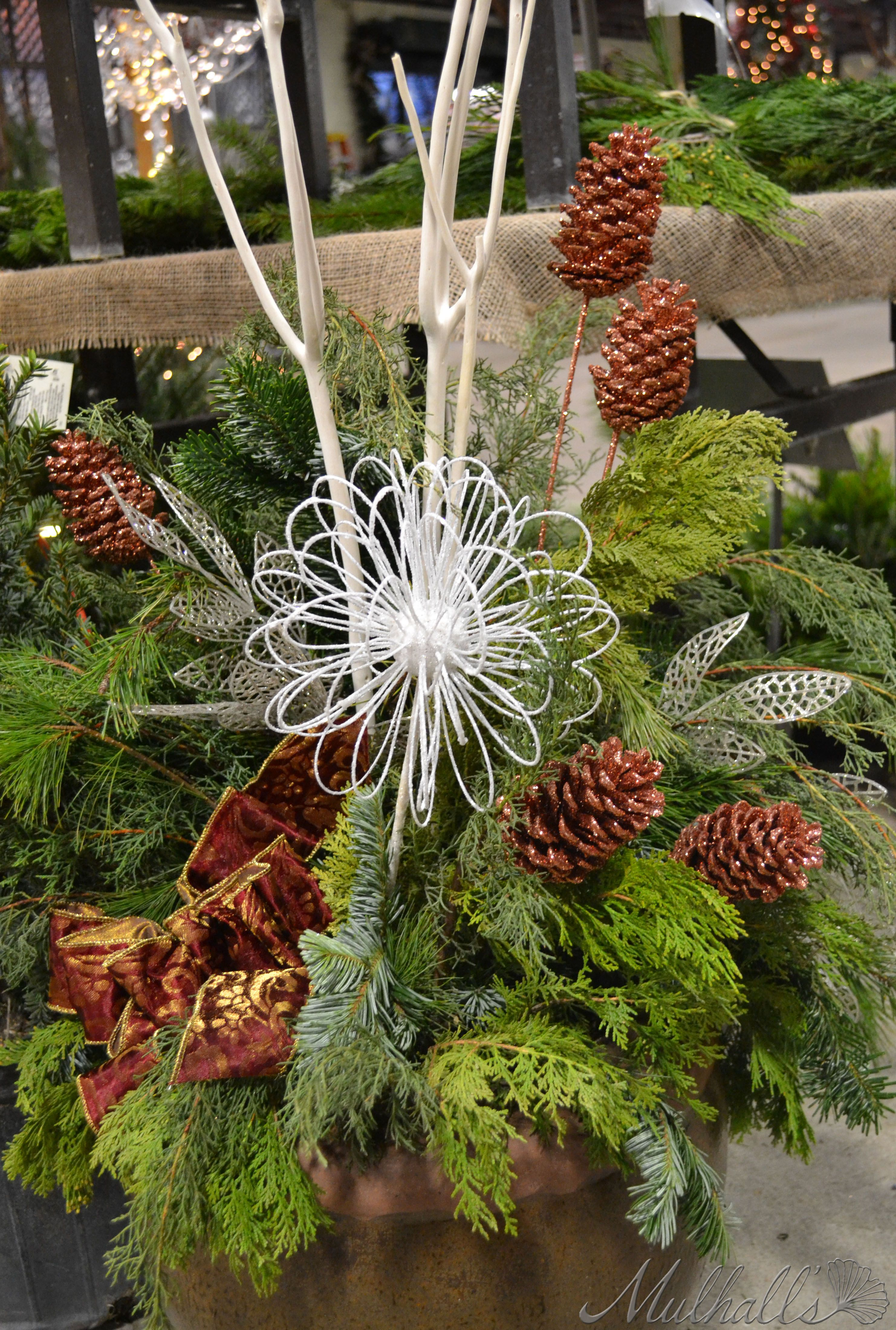 winter container that features pine cones fresh greens and stems