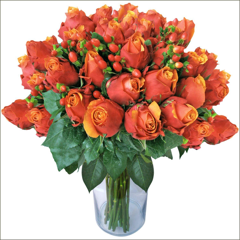 Premium Long Stem Rose Bouquet Long Stem Roses Pinterest
