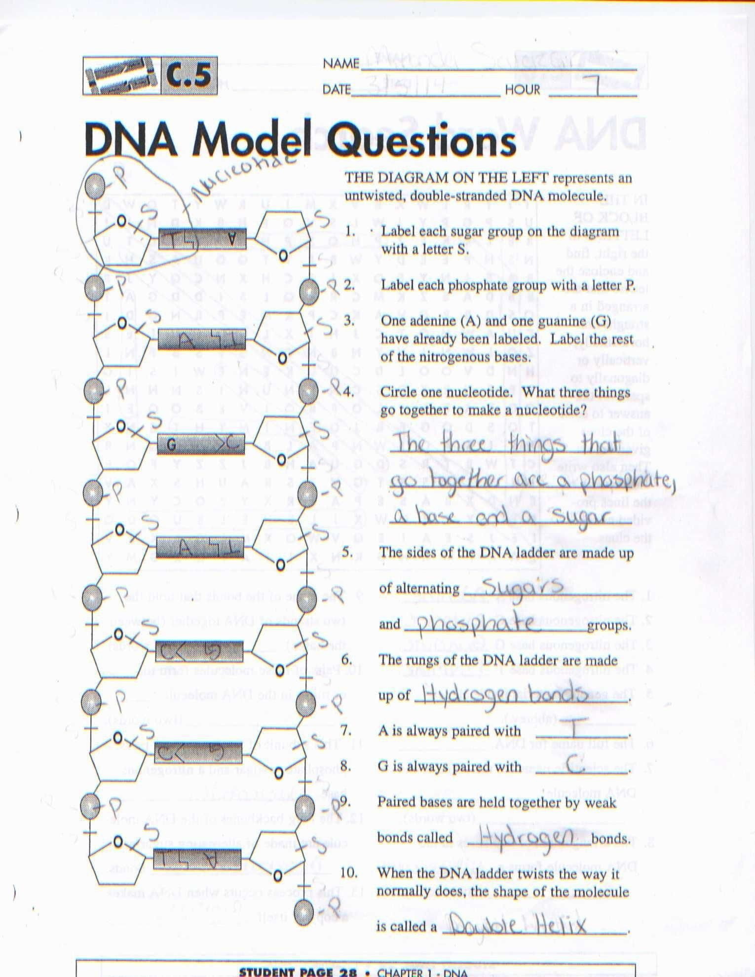 Pin On Printable Worksheet Answer Key