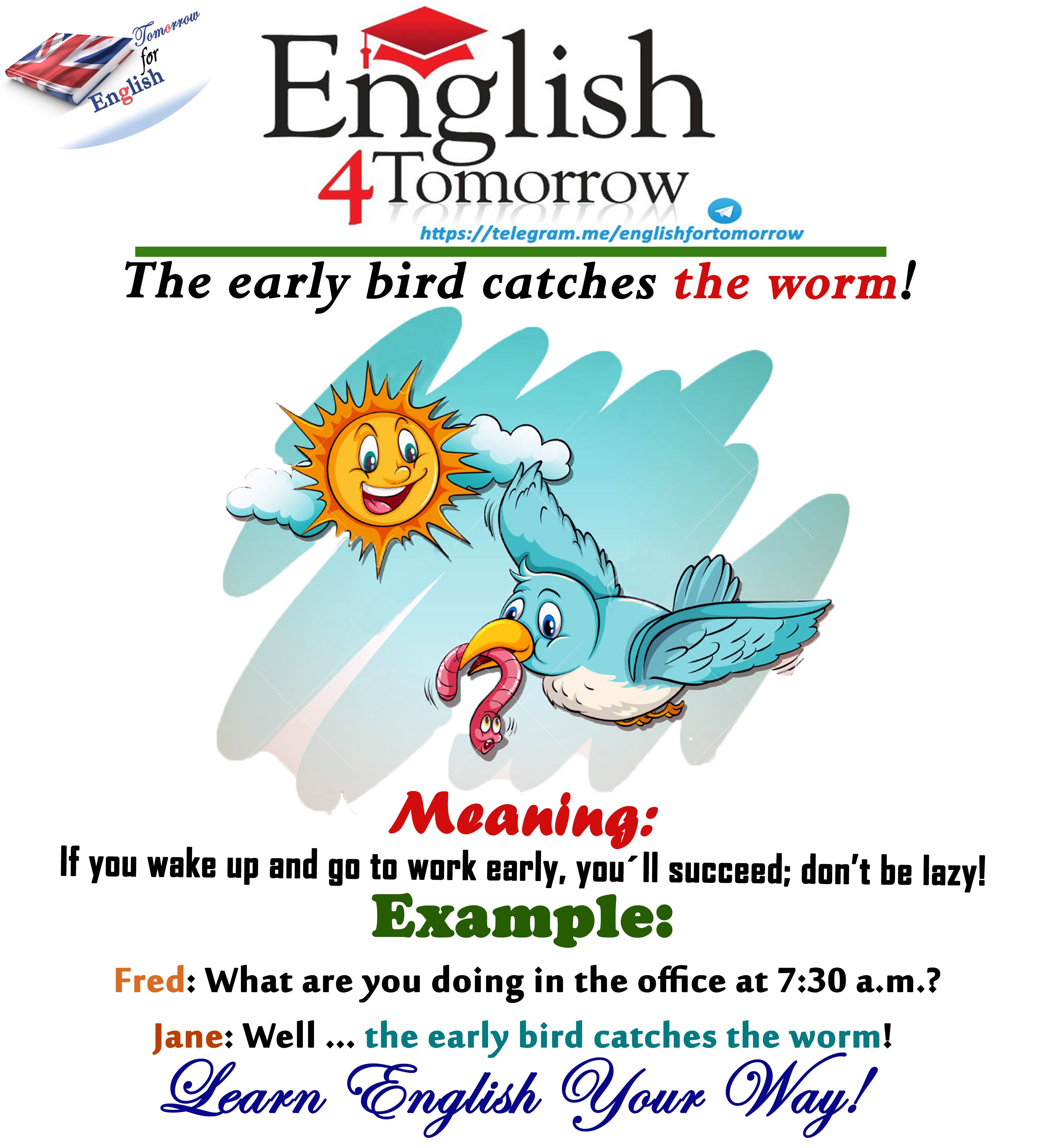 the early bird catches the worm sentence