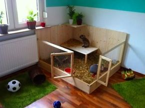 Innenhaltung Fotos Gehege kaninchen, Kaninchengehege