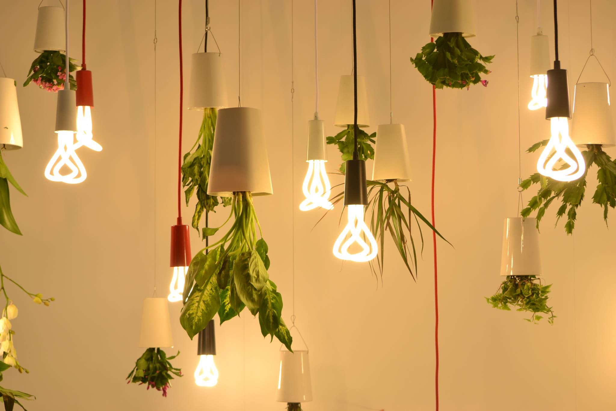 Produced from recycled plastic, the Sky Planter offers a creative and  unique solution to your indoor gardening.