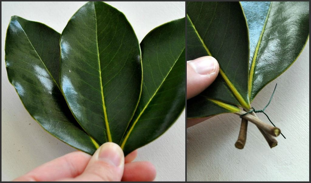Sophia S How To Make A Garland With Magnolia Leaves Magnolia Leaf Garland Magnolia Leaves Centerpiece Magnolia Leaves