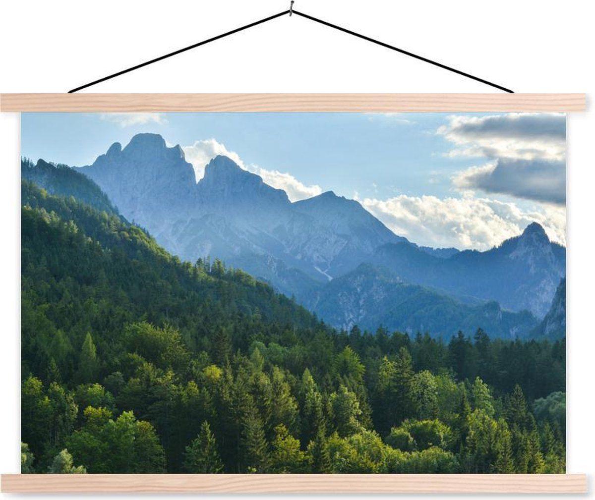 Beboste berglandschap van het Nationaal Park Gesäuse in Oostenrijk schoolplaat platte latten blank 60x40 cm - Foto print op textielposter (wanddecora