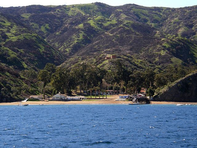 Toyon bay catalina island ca travel stuff i love for Catalina bay