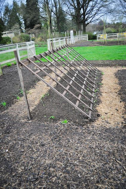 Trellis laid on an angle for climbing plants. This trellis is a good solution for heavier climbers such as squash and watermelon because of its thickness and strength of the wood panel. Once the vines start climbing the trellis, they provide shade for lettuces underneath.