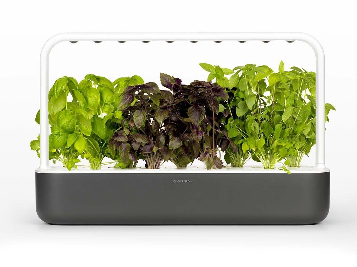 Grow Plants At Home With Click Grow Indoor Garden 400 x 300