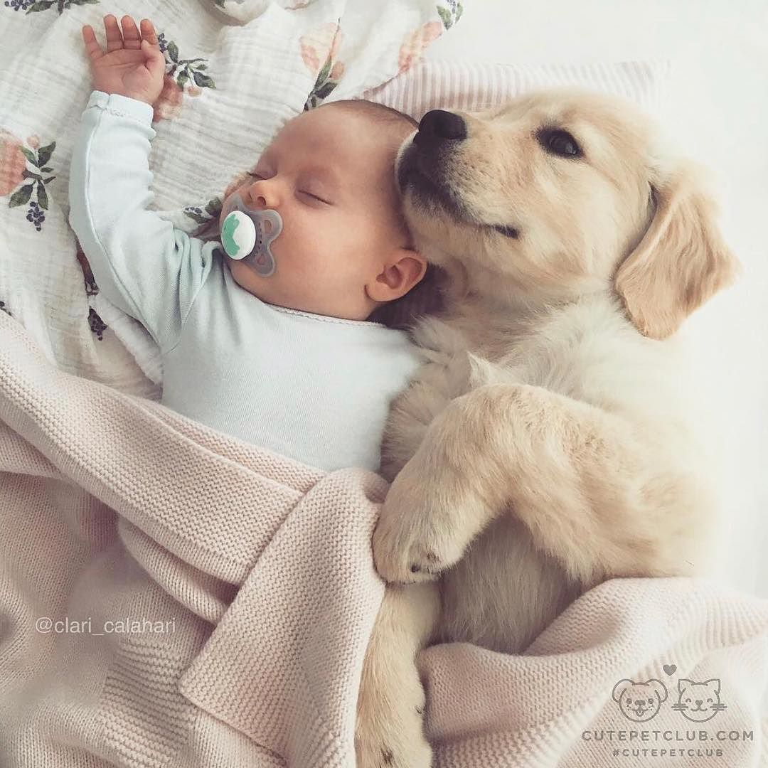 Hugedomains Com Shop For Over 300 000 Premium Domains Cute Animals Cute Kids Baby Animals