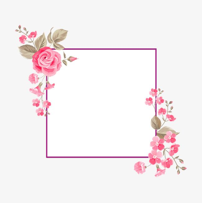 Rose Borders Rose Clipart Plant Png Transparent Clipart Image And Psd File For Free Download Rose Clipart Flower Art Flower Frame