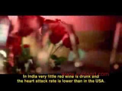 Funny Commercial: French Language School (AvisoAd Com