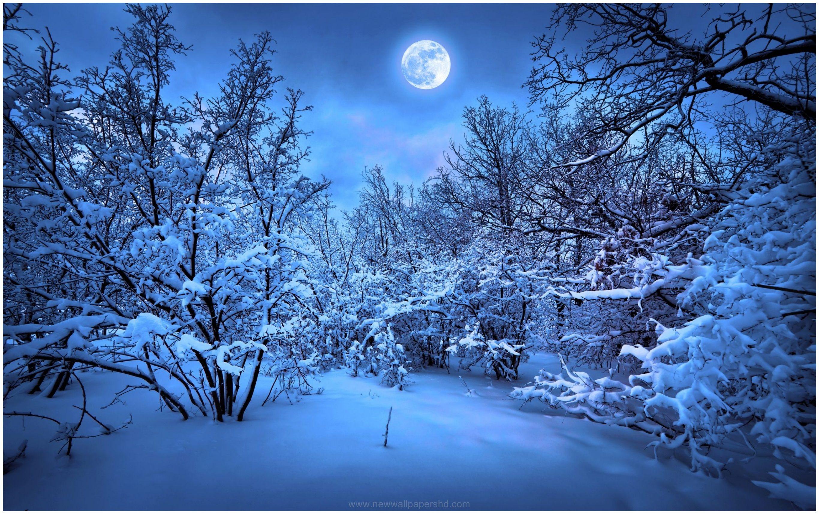 Winter Nights Full Moon Hd Wallpaper