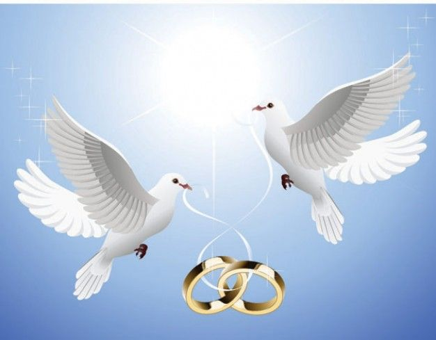 Imagenes De Palomas Con Anillos De Boda Vector Free Graphic Design Art Royalty Free Images