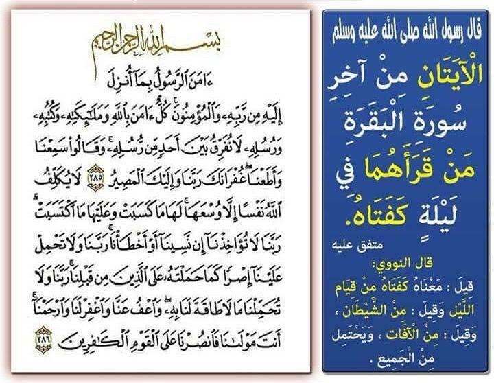 Pin De Khaled Bahnasawy En ٢ سورة البقرة Ale Jaba