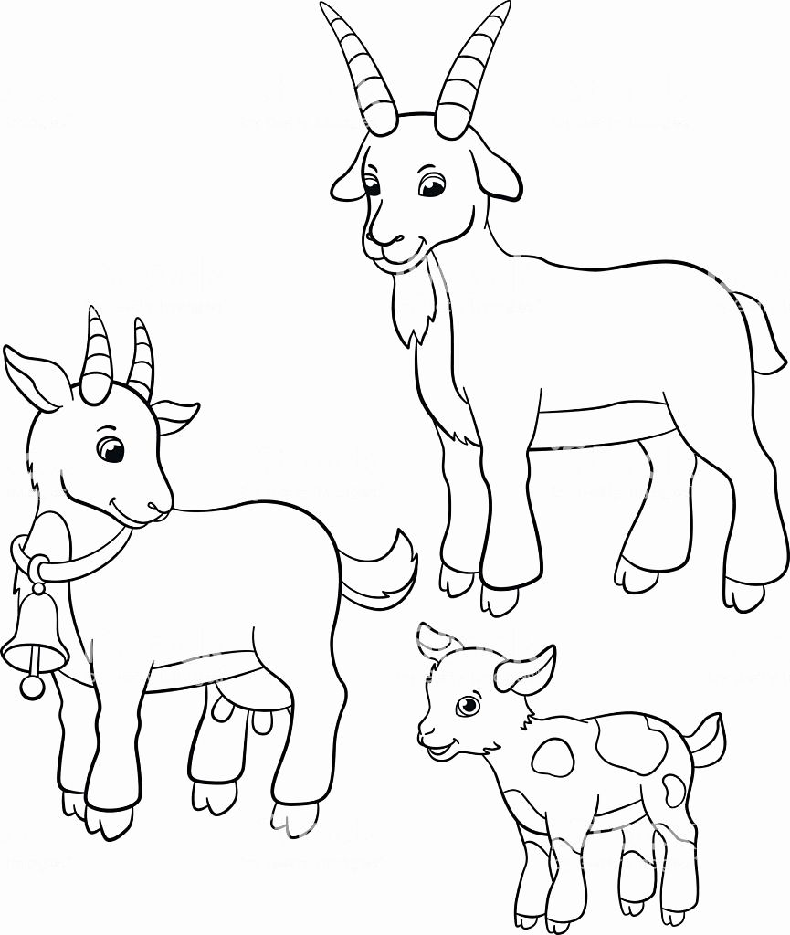 Farm Animals Coloring Pictures Beautiful Coloring Pages Farm Animals Goat Family Stock Vec Farm Animal Coloring Pages Animal Coloring Pages Farm Coloring Pages [ 1024 x 865 Pixel ]