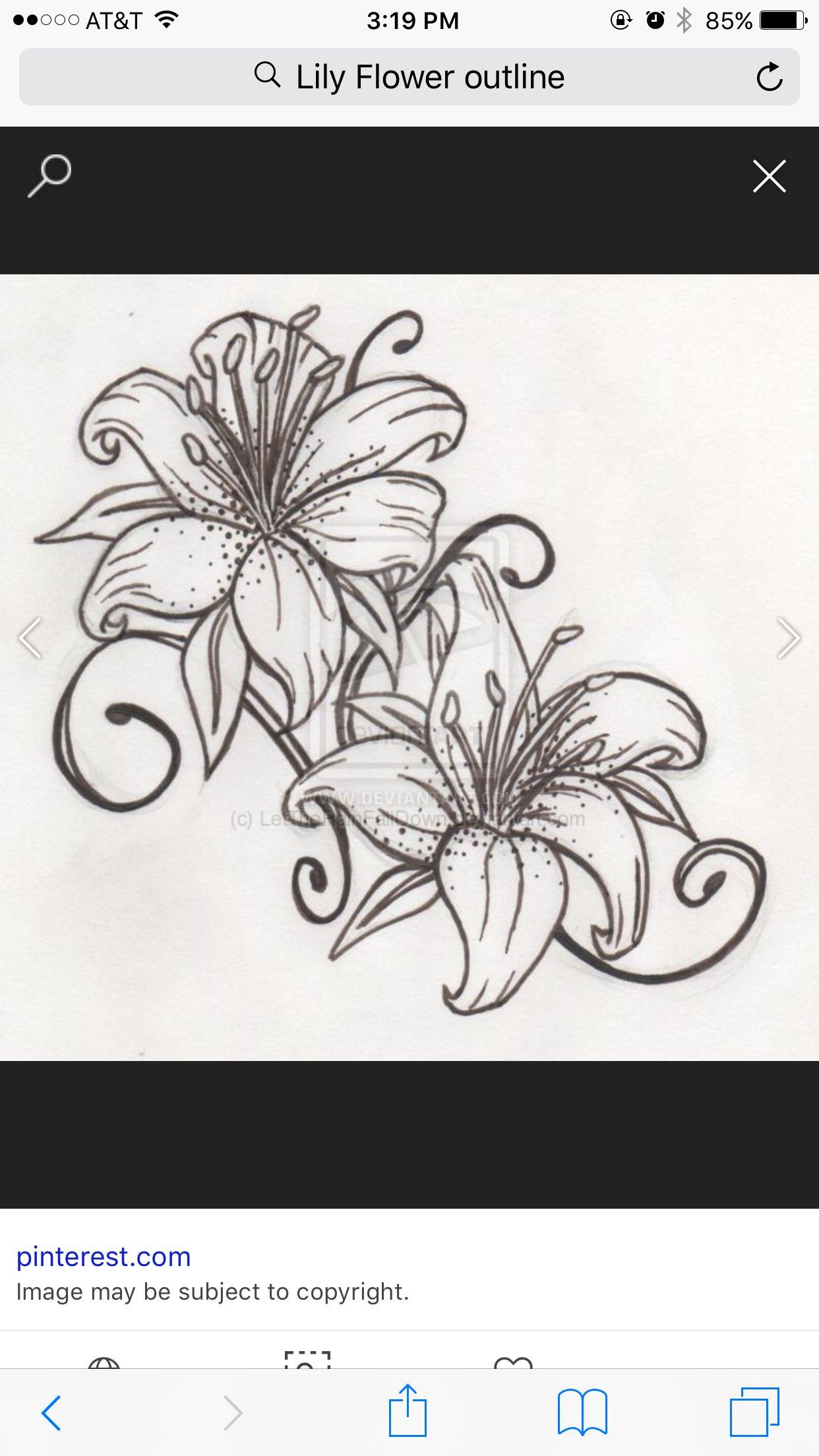 Lily Flower Tiger lily tattoos, Lily tattoo, Lily tattoo