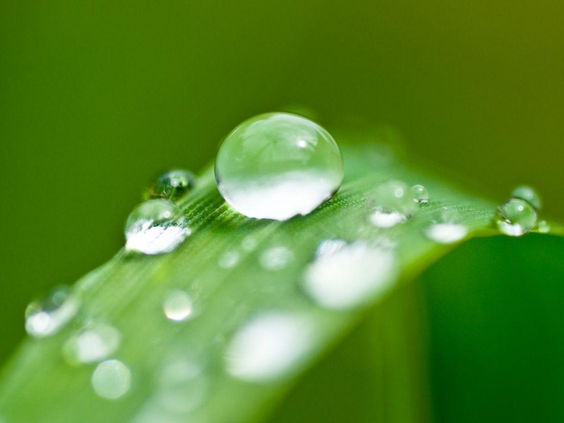 mindfulness bambu - Pesquisa Google