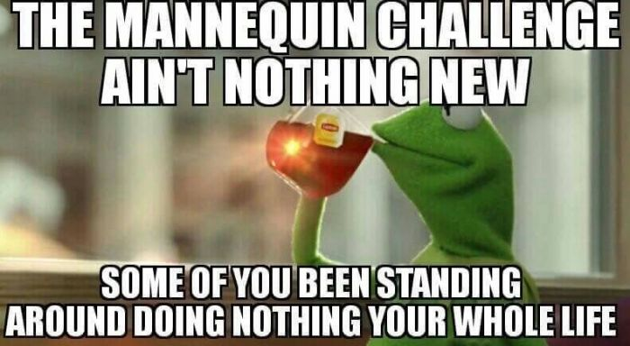 The mannequin challenge ain't nothing new some of you been standing around doing nothing your whole life