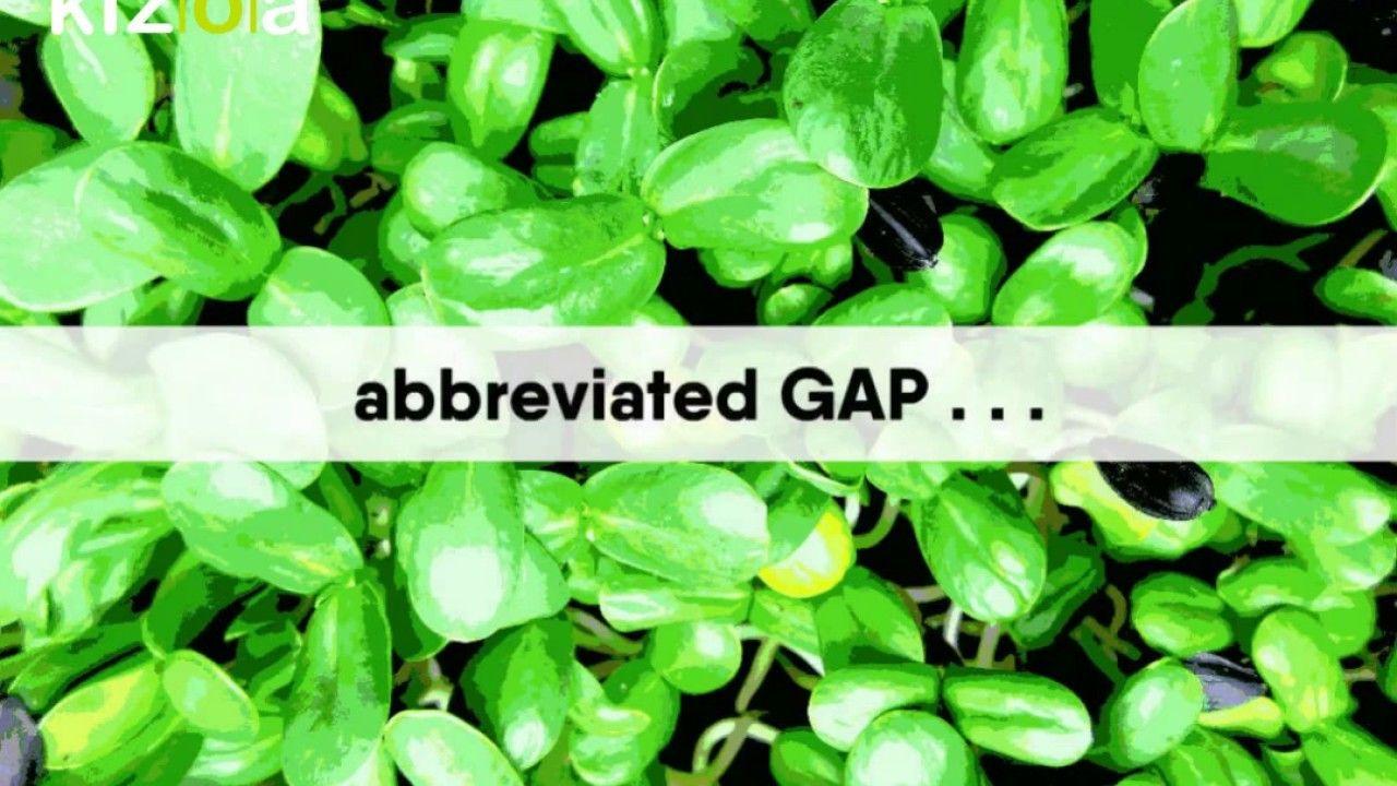 Growing Microgreens for Profit in Washington State using