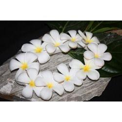 Lei Flower Vase 11 X 6 Wedding Hawaii Made Tclbs Flower Vases Orchid Flower Plumeria