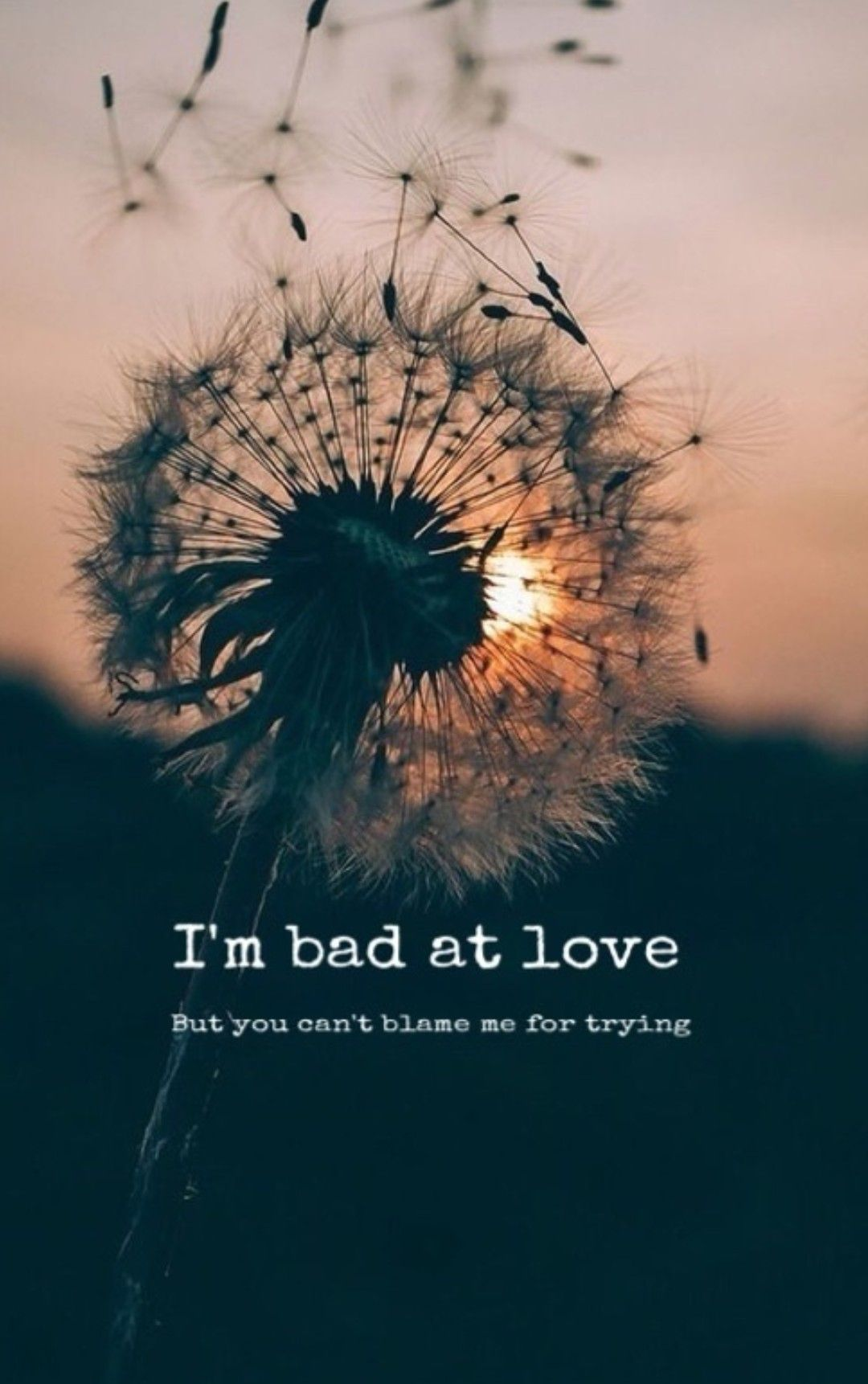 Bad At Love Halsey Music Dandelion Quotes Flowers Quotes