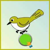 Go Dodo Go is a multiplayer interactive educational game for kids which helps in memorizing various animals and birds. The game provides visual and audio clues similar to flash cards.